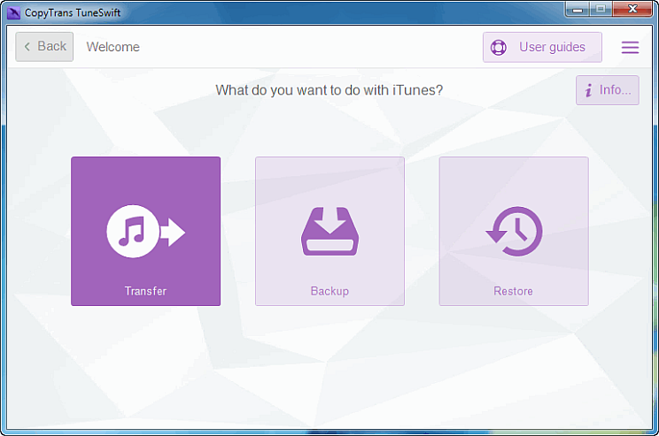 how to manually transfer songs in itunes
