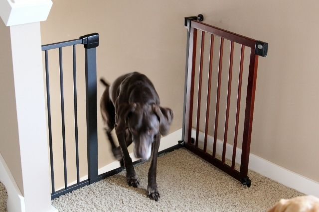 first year baby gate manual